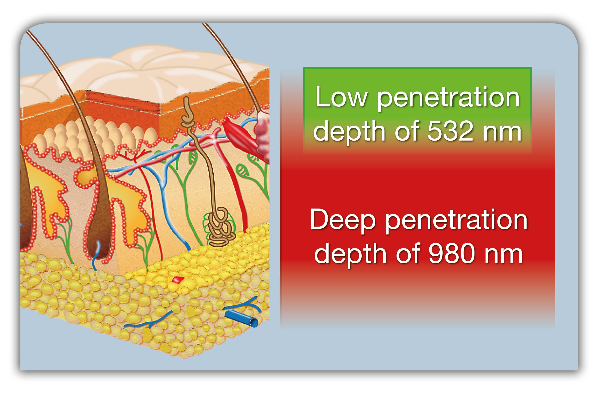 Usual reserve 980nm depth of penetration